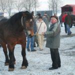 Skaryszew i Bodzentyn - 2010