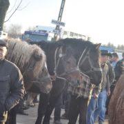 Targ w Skaryszewie