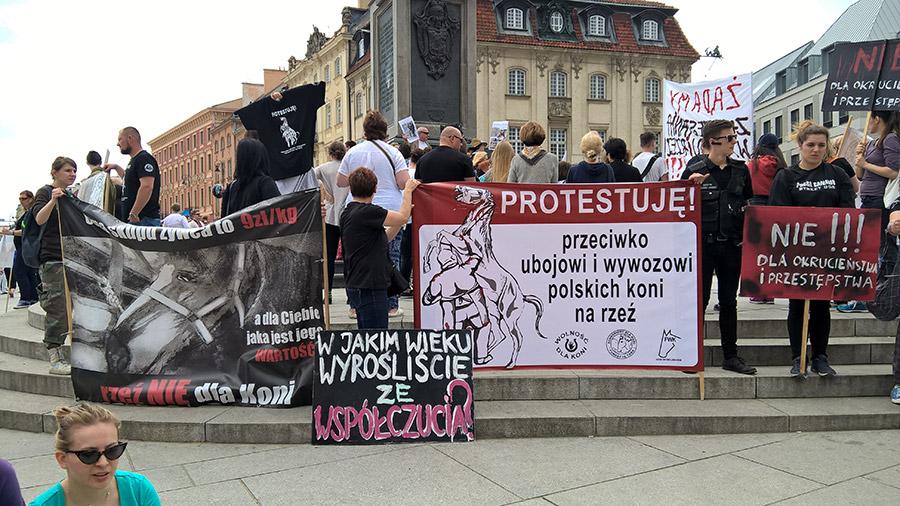 Protest manifestacja plac zamkowy warszawa TARA 5