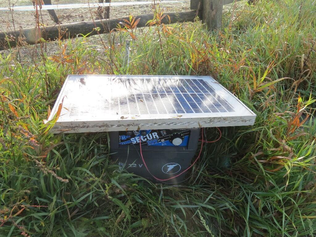 elektryzator z baterią słoneczną