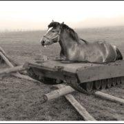koń-czołg