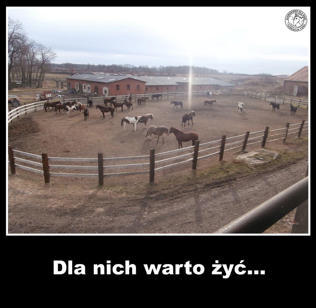 warto