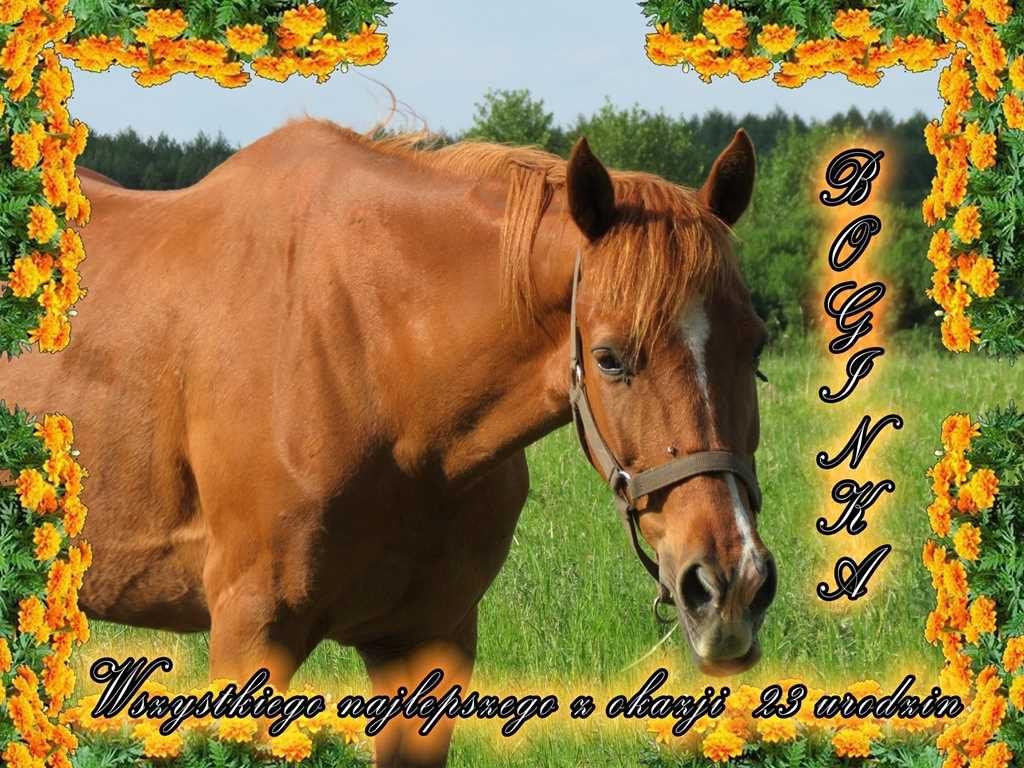Urodziny Boginki