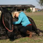 Miłość do koni