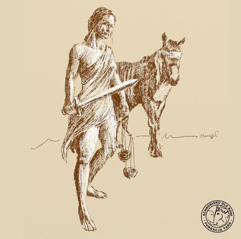 W obronie koni