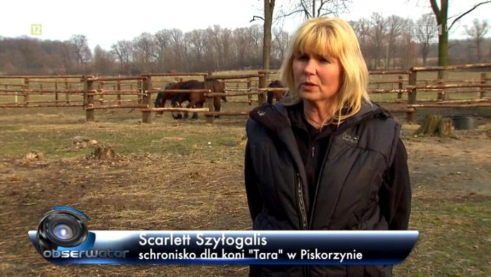 Zobacz reportaż Tara TVP Obserwator