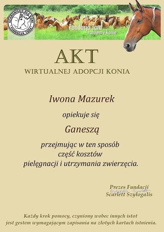 Akt adopcji konia