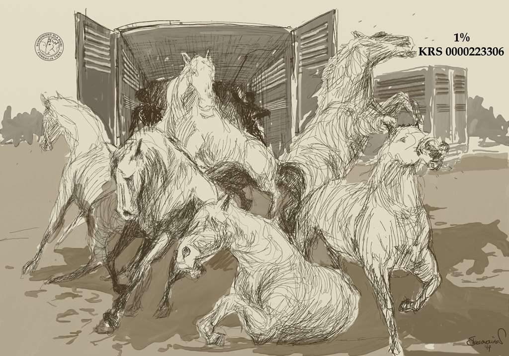 Grafika koni