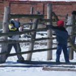 Wolontariusze z Brzegu Dolnego