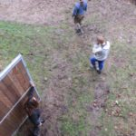 Wyjazd na pastwiska