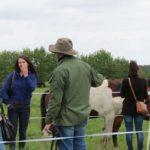 Wycieczka na pastwiskach