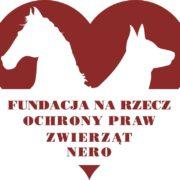 Fundacja Nero