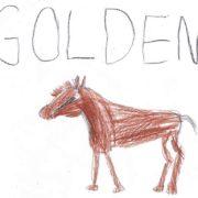 Rysunki dla Goldena