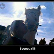 Pocałunek Wiedźmina