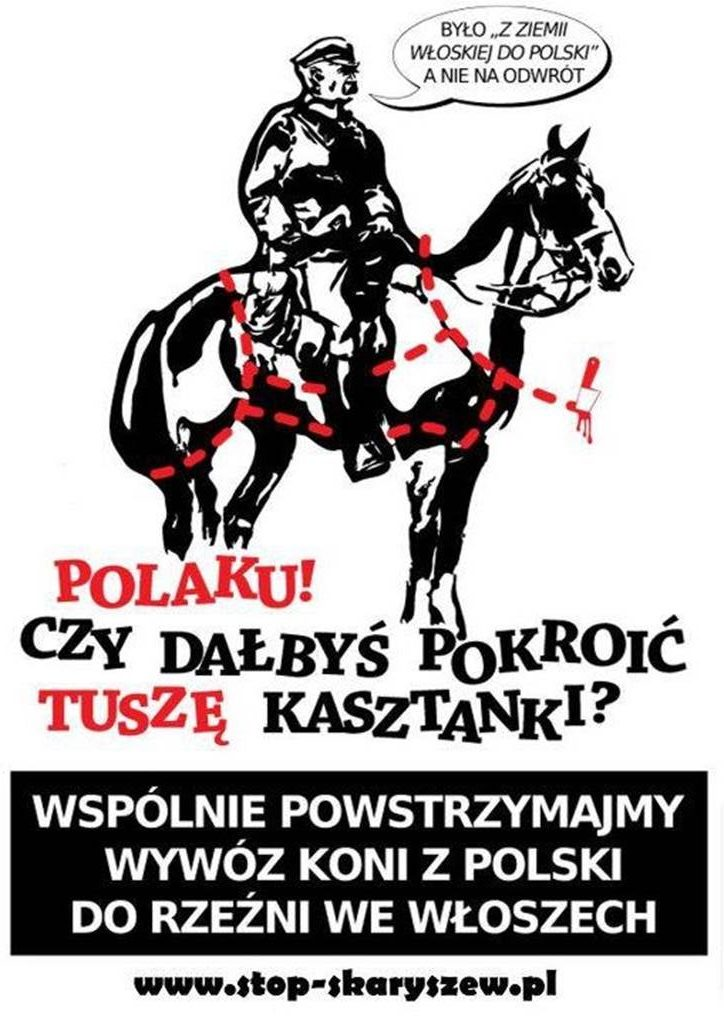 Plakat Skaryszew