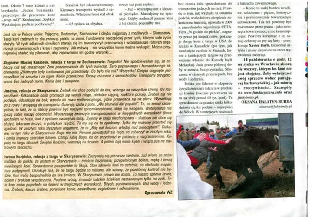 Artykuł w gazecie