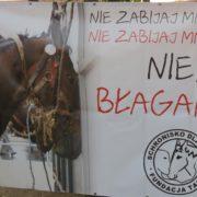 Manifestacja we Wrocławiu