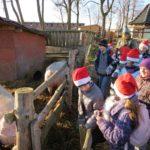 Wycieczka z Mikołajem