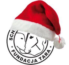 logo mikołajowe