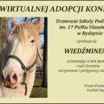 adopcja Wiedźmina
