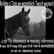 Walczący koń