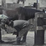 Kowalskie zajęcia