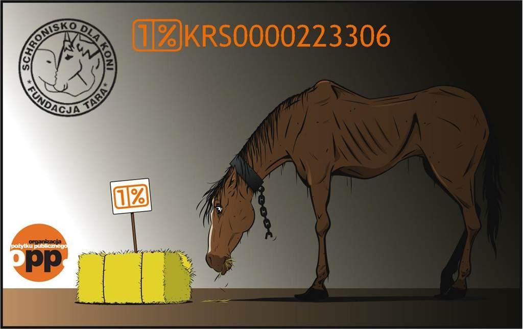 Grafika konia