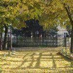 Jesienny koloryt.